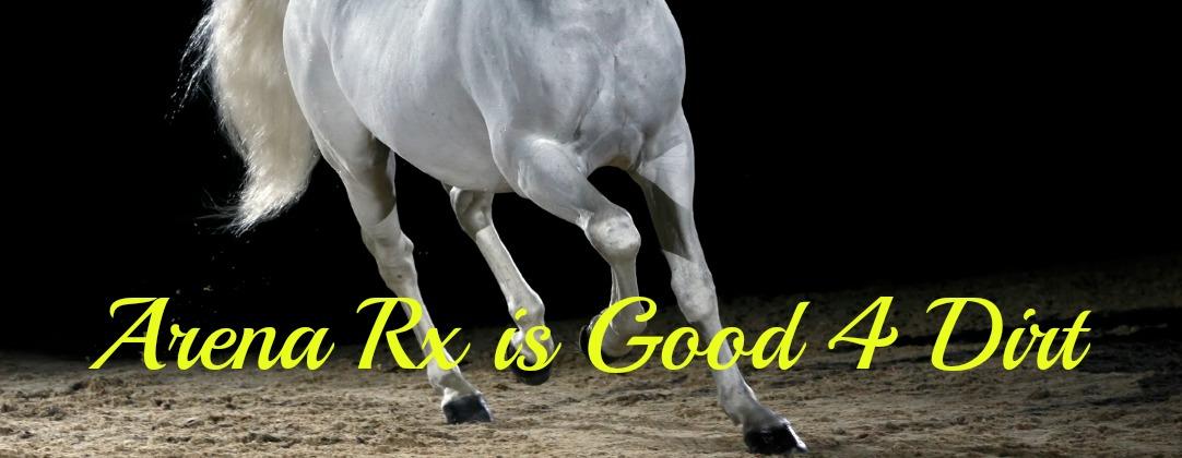 Arena Rx Logo Header Logo